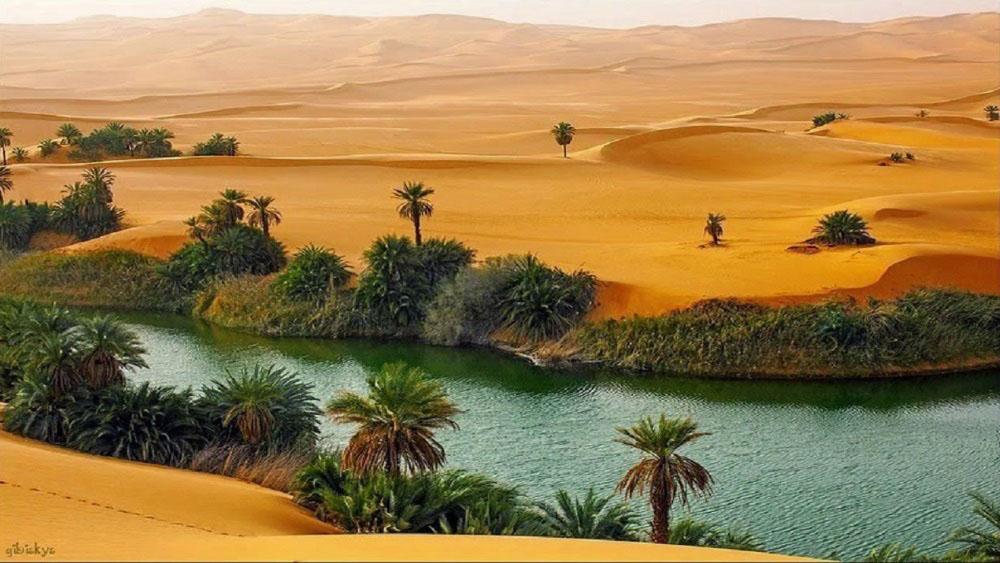 картинка фотография курорта Оазисы Западной Пустыни в Египте