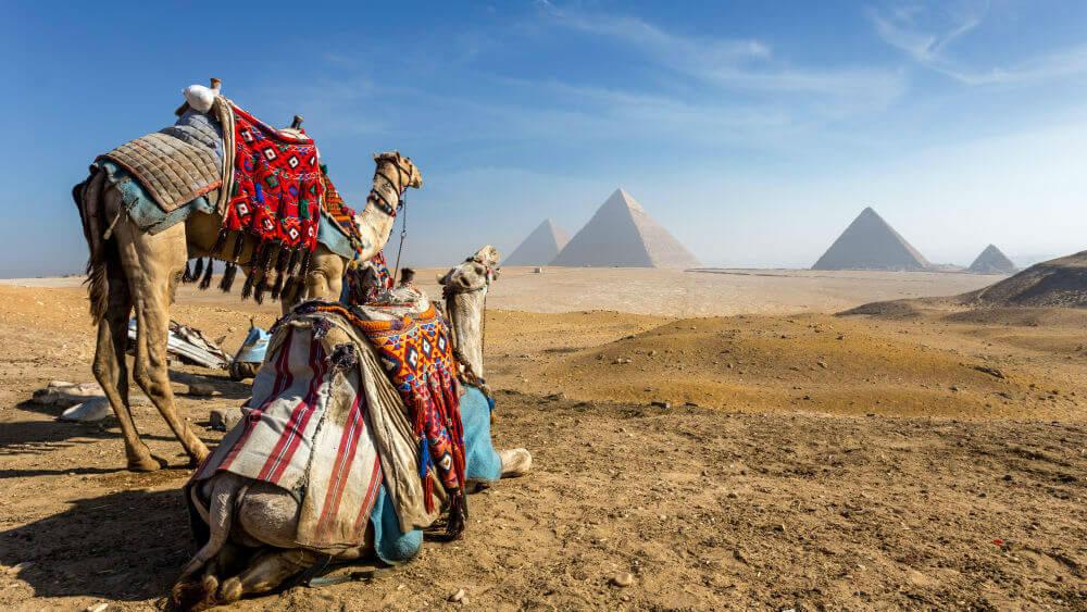 Экскурсия в Каир автобусом на 1 день