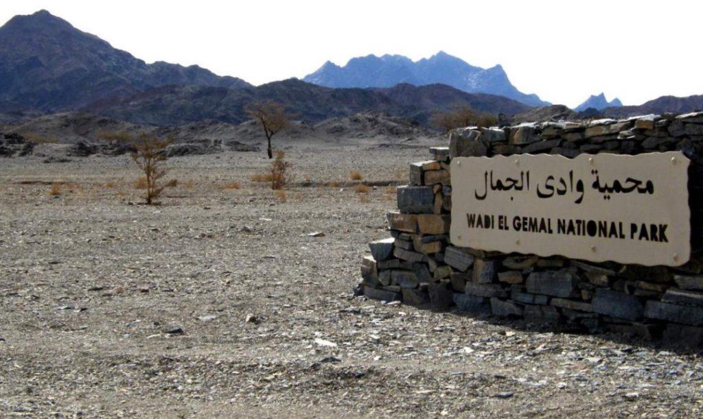 Национальный парк Долина Верблюдов
